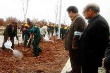 اداره منابع طبیعی سبزوار با کمبود شدید نیرو مواجه است