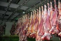توزیع150تن گوشت قرمز در ایلام
