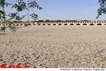 دامداری و پرورش شترمرغ جایگزین کشاورزی شود  کم آبی امروز محصول بیتدبیری های دولت قبل است