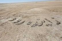 انتقال آب به اصفهان، برای تامین حق آبه انتقالی به دیگر شهرهاست