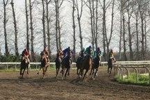 هفته شانزدهم مسابقات اسبدوانی گنبدکاووس برگزار شد