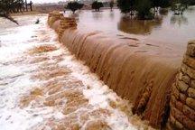 هلال احمر به 30 خودرو گرفتار در سیلاب پلدختر امدادرسانی کرد