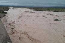 طغیان رودخانه های حاجی عرب و خررود در بویین زهرا ادامه دارد