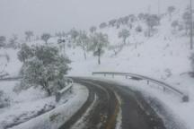 توده هوای سرد در قزوین پایدار خواهد بود