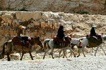 تور گردشگران خارجی همراه با کوچ عشایر بختیاری برگزار می شود