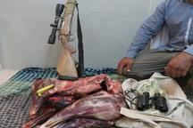 2 شکارچی غیرمجاز در جیرفت دستگیر شدند