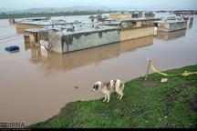 ساخت و ساز در بستر و حریم رودخانه ها ممنوع و غیرقانونی است