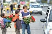 اجرای طرح های حمایتی و پیشگیرانه برای ساماندهی کودکان کار در قم