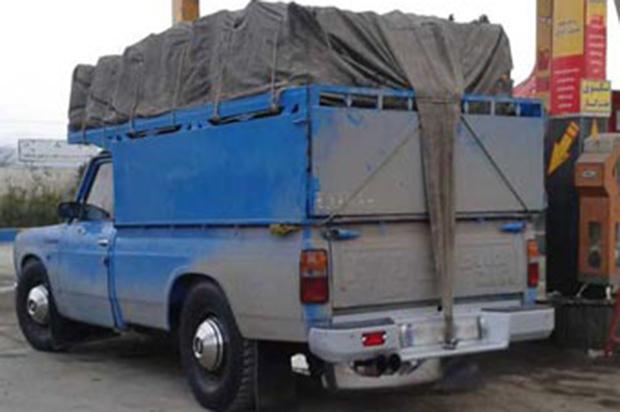 اغلب وانت بارهای فعال در شهر زنجان پروانه اشتغال ندارند