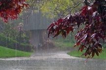 هوای البرز بارانی می شود