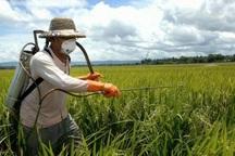 مصرف سموم کشاورزی در سرایان 30 درصد کاهش یافت