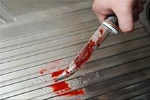 نزاع خانوادگی مرگبار در بلوار شاهنامه  قتل پسر عموی 18 ساله با ضربات چاقو