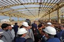استاندار کرمانشاه: روز شماری برای بهره برداری از راه آهن کرمانشاه آغاز می شود