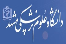 چند محل تولید داروهای غیرمجاز در مشهد کشف شد