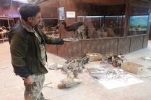 موزه تنوع زیستی شهر محمدیه ترمیم و سمپاشی شد