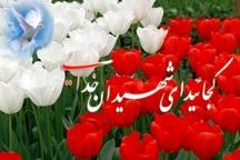 گلزار های شهدا در مناطق مختلف شهرستان ساماندهی شده اند