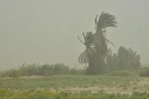 باد با سرعت 61 کیلومتر بر ساعت هامون را در نوردید