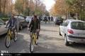 اجرای طرح کارمند سبز در دانشگاه فردوسی مشهد آغاز شد
