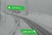 برف جاده کرج- چالوس را مسدود کرد
