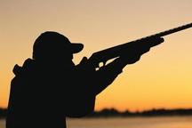 شکارچی غیرمجاز مرغابی در استان قزوین دستگیر شد