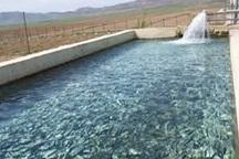 100 تن ماهی از استان اردبیل صادر شد