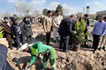 کم آبی نباید مانعی برای توسعه فضای سبز مشهد باشد