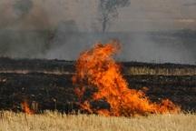 کشاورزان پارس آباد از آتش زدن بقایای محصولات کشاورزی اجتناب کنند