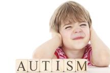 خیرین برای ساخت مدرسه ویژه دانشآموزان اوتیسم در کرمانشاه مشارکت کنند