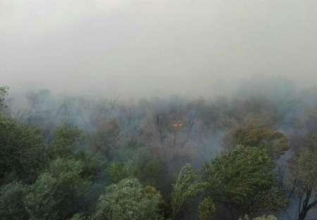 28 نفر از عوامل آتش سوزی در جنگل های کرخه به مراجع قضایی شوش معرفی شدند