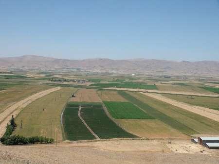 شهرستان روانسر سالانه بیش از 295 تن تولیدات کشاورزی دارد