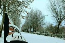 بارش برف شهرهای شمال آذربایجان غربی را سفید پوش کرد