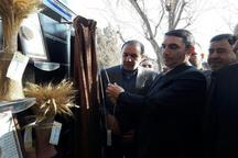 هفت دستاورد پژوهشی مرکز تحقیقات کشاورزی استان مرکزی رونمایی شد