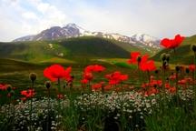 تنوع گردشگری طبیعی و تاریخی اردبیل پاسخگوی تمام سلیقه ها است