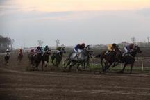 62 اسب در هفته هفدهم مسابقات اسبدوانی گنبد رقابت کردند