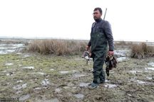 فرایند صدور مجوز شکار موقت پرندگان در بوکان آغاز شد