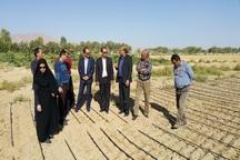 سه پروژه کشاورزی در ابرکوه بهره برداری شد