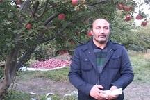 محدودیت بیمه گذاری بانوان اردبیلی در صندوق بیمه اجتماعی کشاورزان و عشایر رفع شد