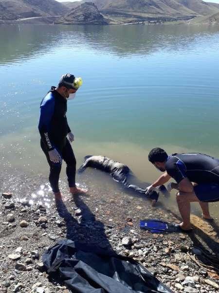 غواصان جسد یک مرد را از سد اکباتان همدان خارج کردند