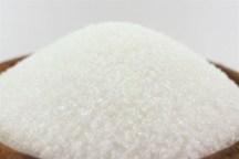 4560 تن شکر در استانهای شمالی توزیع می شود