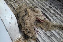 جمع آوری تورهای غیرمجاز ماهیگیری در رودخانه های استان مازندران