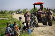 شماره گذاری ماشین های کشاورزی تا 25 سال از زمان ساخت در گلستان