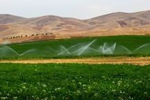 90درصد زمین های کشاورزی دشتی زیر پوشش آبیاری نوین است