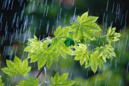 تداوم بارش رگباری باران در استان اصفهان