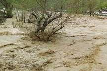 هواشناسی خراسان شمالی به وقوع  سیلاب در استان هشدا داد