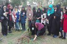 کتاب 'خداحافظی در خیابان پاییز' در خوزستان نقد شد
