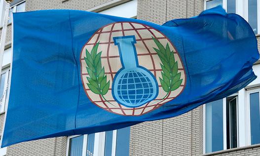 بازرسان سازمان منع تسلیحات شیمیایی وارد دوما شدند