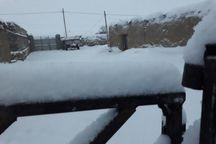 ارتفاع برف در برخی نقاط روستایی شیروان به 45 سانتی متر رسید