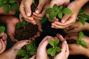 سرمایه گذاری صندوق توسعه کشاورزی به یک هزار میلیارد ریال می رسد