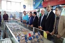 چهار تن گوشت هر هفته در قزوین توزیع می شود