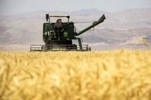 لزوم تبدیل کشاورزی سنتی به مدرن در لرستان- محمد یاراحمدی**